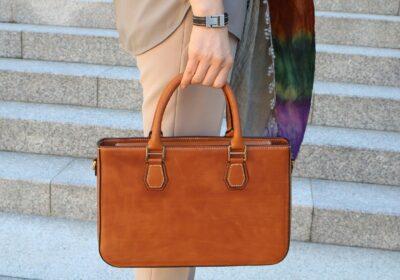 Handbag Market Outlook 2028 |Fortune Business Insights™